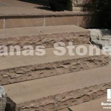 banas_steps01(1)