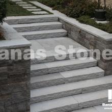 banas_steps03(2)