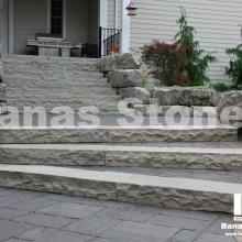banas_steps06(1)