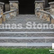 banas_steps10(1)