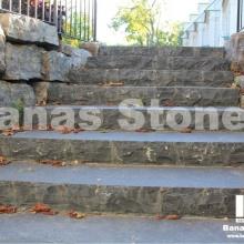 banas_steps12(1)