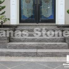 banas_steps14(1)