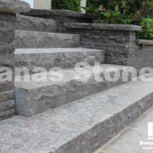 banas_steps15(1)